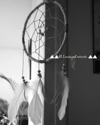 dreamcatcher diy ideas1