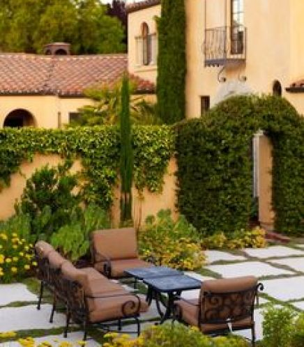 Climbing plants and outdoors9