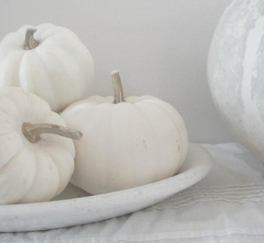 Black and white Halloween ideas22