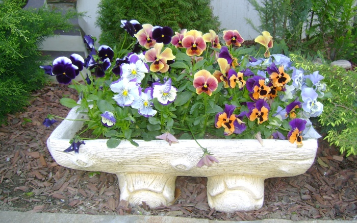 flower beds ideas16