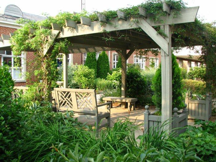 Garden with pergola13