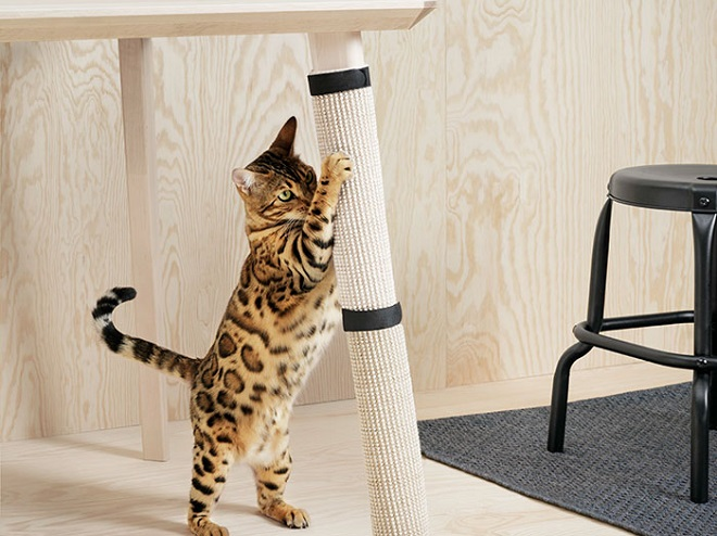 IKEA furniture for pets5