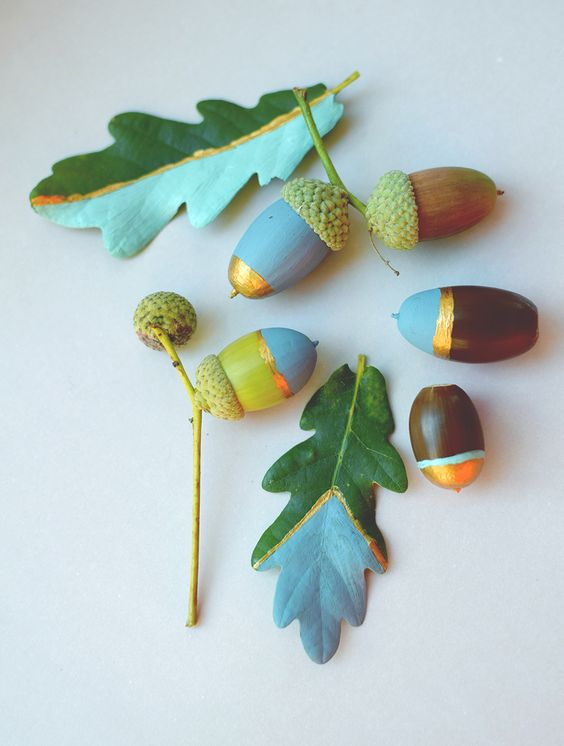 diy from acorns (1)