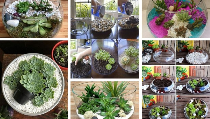 Small Garden In A Glass Bowl Arrangements Ideas With Succulent