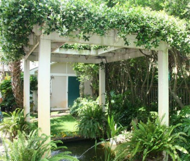 Garden Decoration With Jasmine The Most Popular Climbing Plant My Desired Home