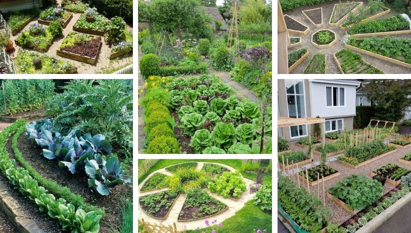 Vegetable Garden Raised To The Rank Of Art 35 Decorative Gardens For Inspiration My Desired Home
