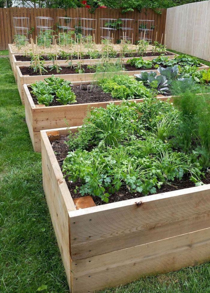 45 Affordable DIY Design Ideas for a Vegetable Garden | My ...