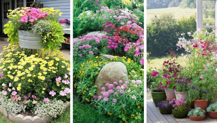 Top ideas of spectacular flower arrangements for the house yard and garden