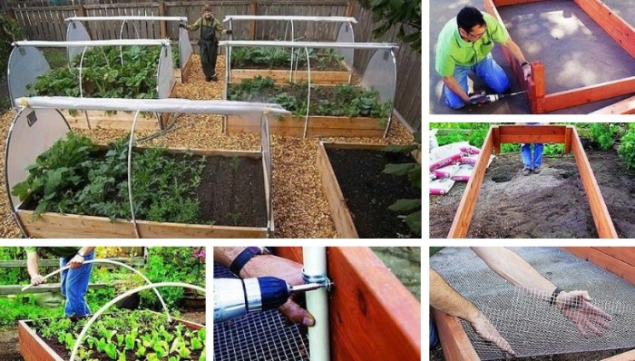 How to make raised beds with protection against moles