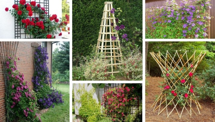Genuine DIY supports for flowers that will boost your yard or garden