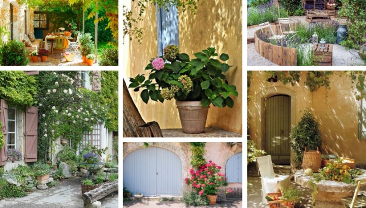 Garden in the style of Provence at the cottage – the art of landscape design