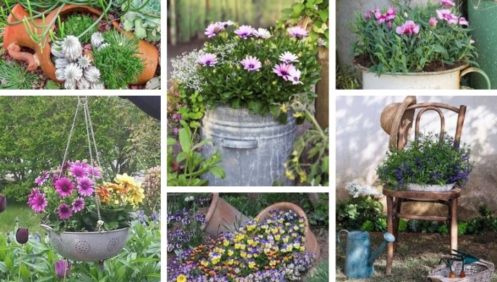 The most beautiful places and ideas to plant flowers in the yard or garden of your home