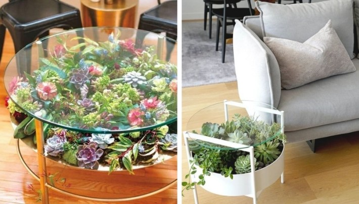 How to make DIY glass tables in stunning huge gardens made of succulents