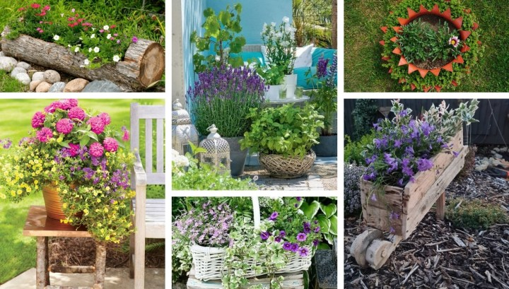 Flower decoration for your yard and garden: 34 beautiful ideas for spring