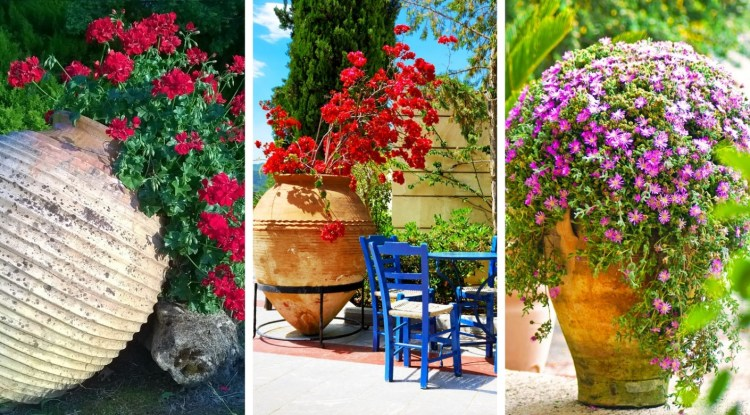 Clay Jars with flowers to decorate your exterior – beautiful ideas to get inspired