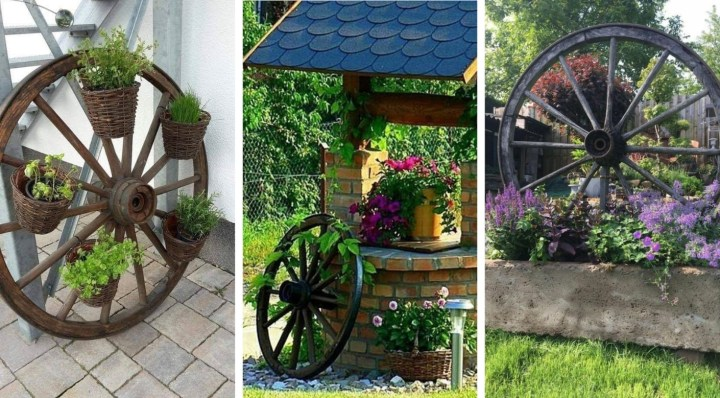 Incorporate an ordinary wooden wheel into your garden decoration – The result will amaze you