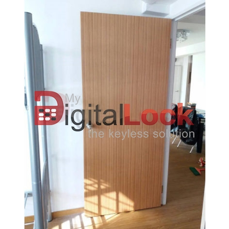 veneer-bedroom-door-solid