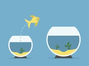 #MARKETING - Adapter sa stratégie et différencier son expérience client par la data -  - By EBG