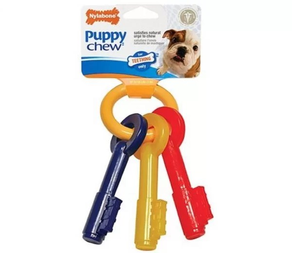 NYLABONE PUPPY CHEW LLAVES X-SMALL TOCINO