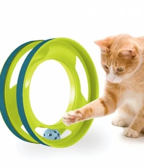 PETSTAGES Gato Gimnasio Ring Track