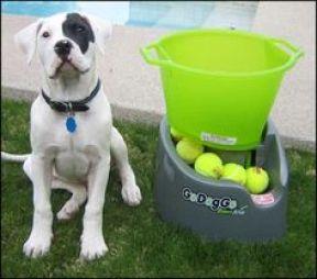 Go Dog Go Fetch Machine reviews