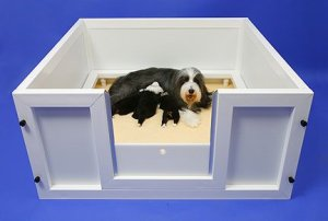 best whelping box
