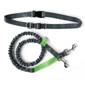 Best Hands Free Dog Leash / Lead
