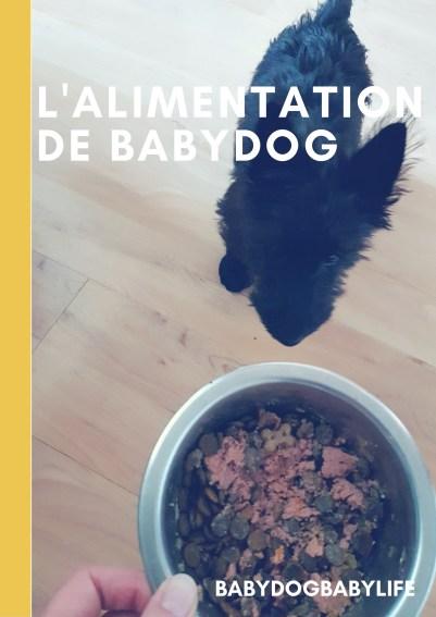L'alimentation de babydog