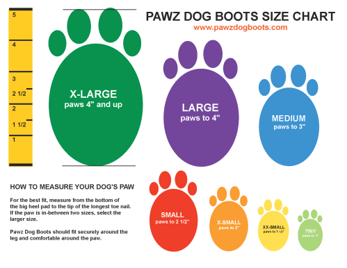 small resolution of pawz dog boots review maximum winter protection