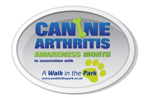Canine Arthritis Awareness Month in association with A Walk In The Park scaled Canine Arthritis Awareness Month Teams with A Walk In The Park