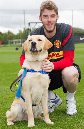 Manchester Utd Keepers Titanic Fines Produce Guide Dog