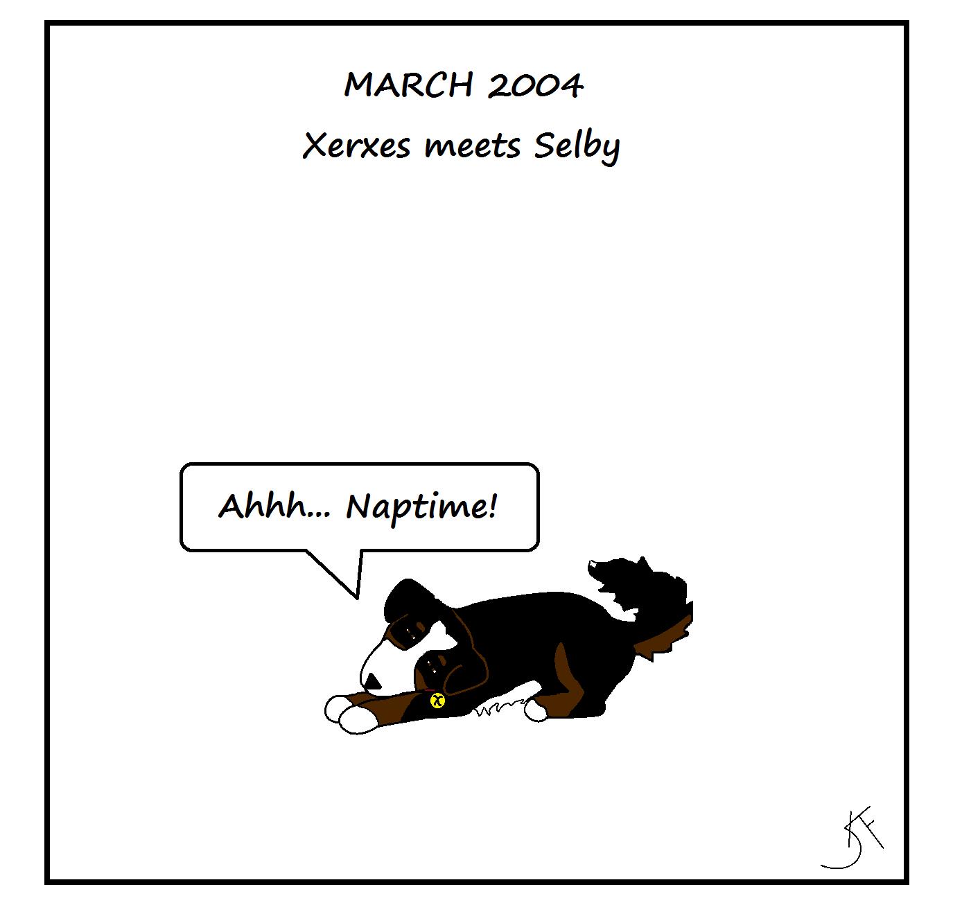 Do Dogs Love