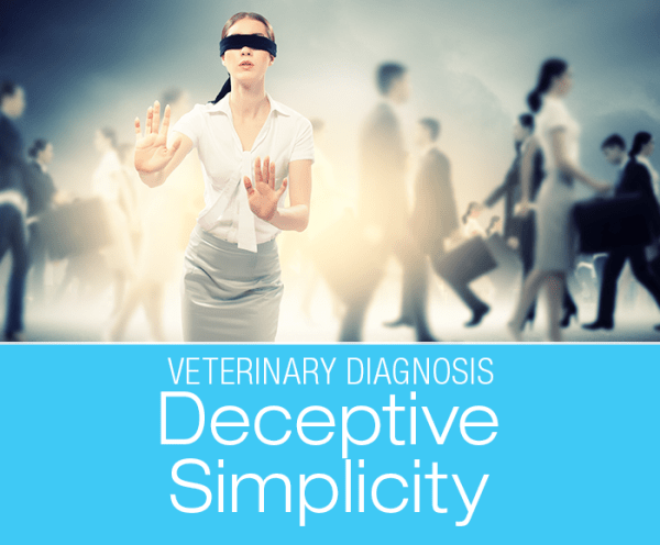 What Is the Diagnosis: Medical Terms That Sound Like A Diagnosis But Really Are Not