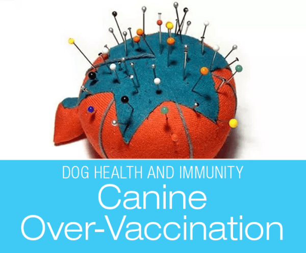 Dog Health and Vaccines: Problems With Canine Over-Vaccination