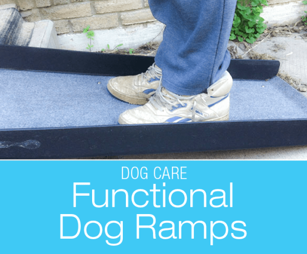 Functional Dog Ramps: The Ups And Downs Of Dog Ramps