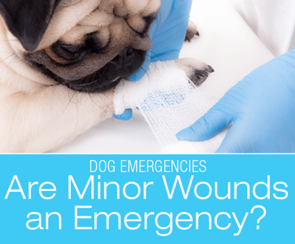 Are Cuts and Abrasions an Emergency?