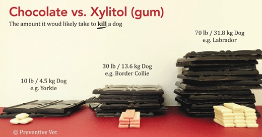 Is Xylitol Ingestion an Emergency?
