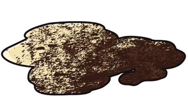 Coffee Grounds in a Dog's Vomit: What Is That Dark Grit in My Dog's Vomit?