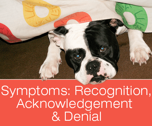 Symptoms: Recognition, Acknowledgement And Denial