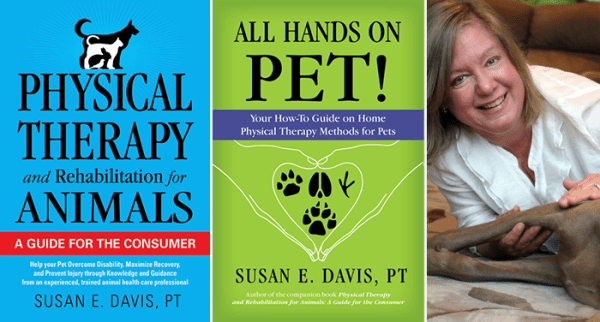 Physical Therapy in Animals