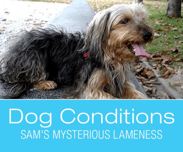 Sam's Mysterious Lameness