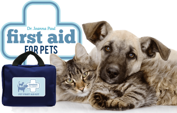 Creature Clinic Pet First Aid Kit