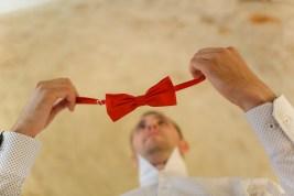 Бабочка жениха. Groom bow-tie