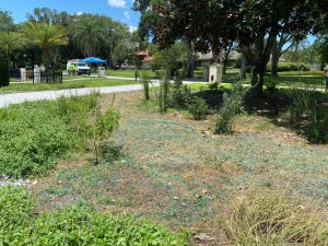Garden Treatment Application