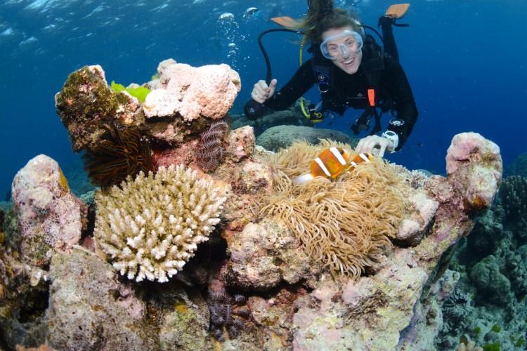 Reef Quest_Cairns_Australia