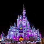 Nine Weeks Until Disney – Nine Things to Experience