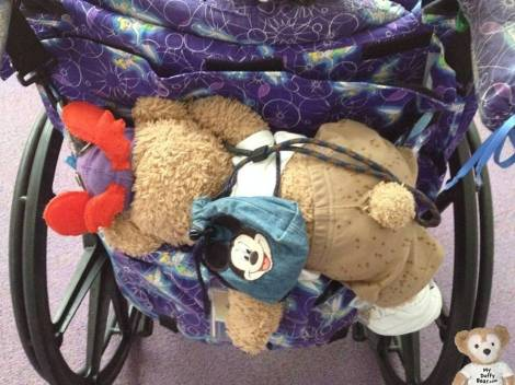 Duffy the Disney Bear jumps into the bag to get out of the rain