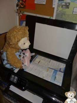 Duffy the Disney Bear puts EPCOT map in scanner