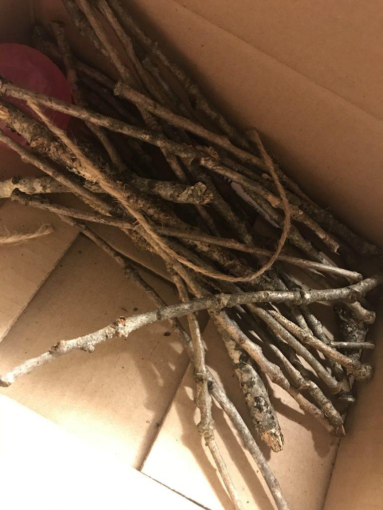 box of twigs
