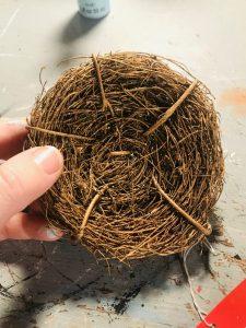 craft birds nest